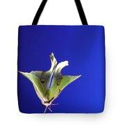 Luna Moth In Flight Tote Bag