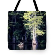 Lunker Lake Tote Bag