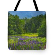 Lupine In Sugar Hill New Hampshire Tote Bag