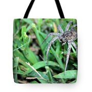 Lurking Spider In The Grass Tote Bag