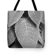 Lush Leaves And Water Drops 2 Bw Tote Bag