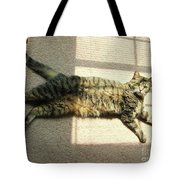 Lying In The Sunlight Tote Bag