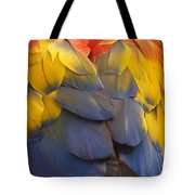 Macaw Parrot Plumes Tote Bag