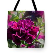 Maco Petunia Flower Double Burgundy Madness Art Prints Tote Bag