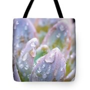 Macro Succulent With Droplets Tote Bag