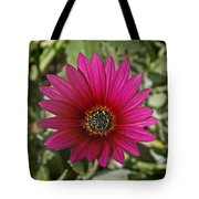Magenta In Your Face Tote Bag