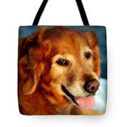 Maggies Smile Tote Bag by Karen Wiles