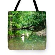 Magic Pond Tote Bag