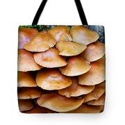 Magic Shelf Tote Bag