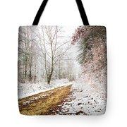 Magic Trail Tote Bag by Debra and Dave Vanderlaan