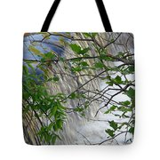 Magical Falls H Tote Bag
