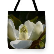 Magnificent Alabama Magnolia Blossom Tote Bag
