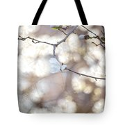 Magnolia Dream Tote Bag