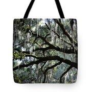 Magnolia Meets Live Oak Tote Bag