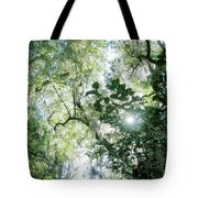 Magnolia Plantation Sc Tote Bag
