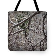 Magnolia Tree Branches Covered With Ice No.3834 Tote Bag