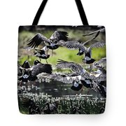 Magpie Geese In Flight Mcminn Lagoon Tote Bag