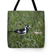 Magpie Lark Tote Bag