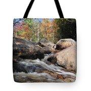 maine 29 Baxter State Park Trailside Stream Tote Bag