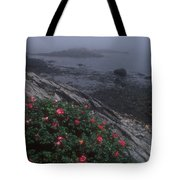 Maine Coastline Tote Bag