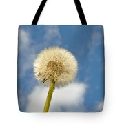 Make Another Wish Tote Bag