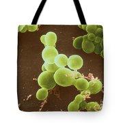 Malassezia Furfur Tote Bag
