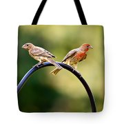 Male And Female House Finch Tote Bag