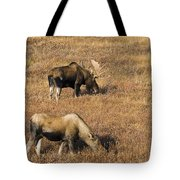 Male And Female Moose Alces Alces In Tote Bag