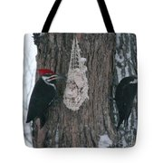 Male And Female Pileated Woodpeckers Tote Bag