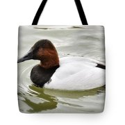 Male Canvasback Duck  Tote Bag