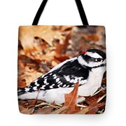Male Downy Woodpecker 4 Tote Bag