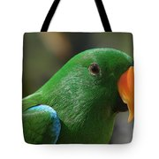 Male Eclectus Parrot Tote Bag