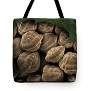 Male Fern Sporangia, Sem Tote Bag