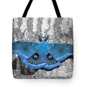 Male Moth Light Blue Tote Bag