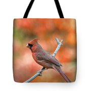 Male Northern Cardinal - D007810 Tote Bag