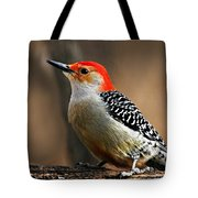 Male Red-bellied Woodpecker 4 Tote Bag