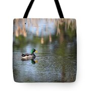 Mallard - Duck - Lonely Guy Tote Bag