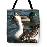 Mallard And Chinese Swan Goose - Anser Cygnoides - Featured In Wildlife Group Tote Bag