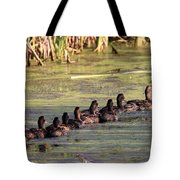 Mallard Ducks In A Row Tote Bag