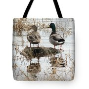 Mallard Ducks Standing On A Rock Tote Bag