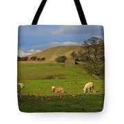 Mallerstang Dale In Cumbria Uk Tote Bag