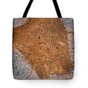 Mammalian Histology Tote Bag