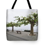 Man With Dog Walking On Empty Promenade With Trees Tote Bag