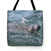 Manatee At Ponce Inlet Tote Bag