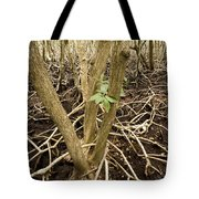 Mangrove Forest With Red Mangrove Tote Bag