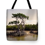 Mangroves In The Everglades Tote Bag
