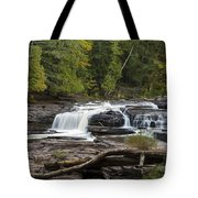 Manido Falls 1 Tote Bag