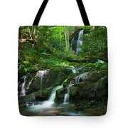 Mannis Branch Falls Tote Bag