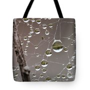 Many Worlds In One Small Space Tote Bag