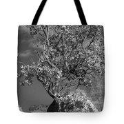 Manzanita Outcrop Tote Bag